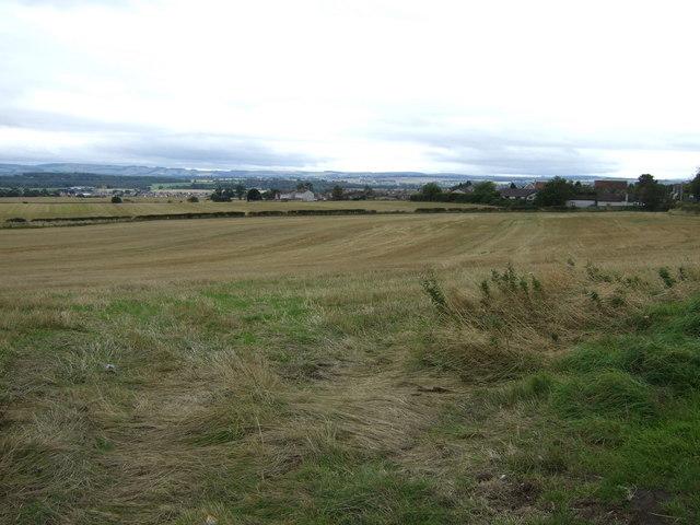 Farmland. North Elphinstone