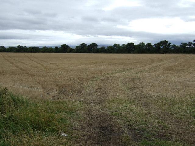 Farmland near Buxley