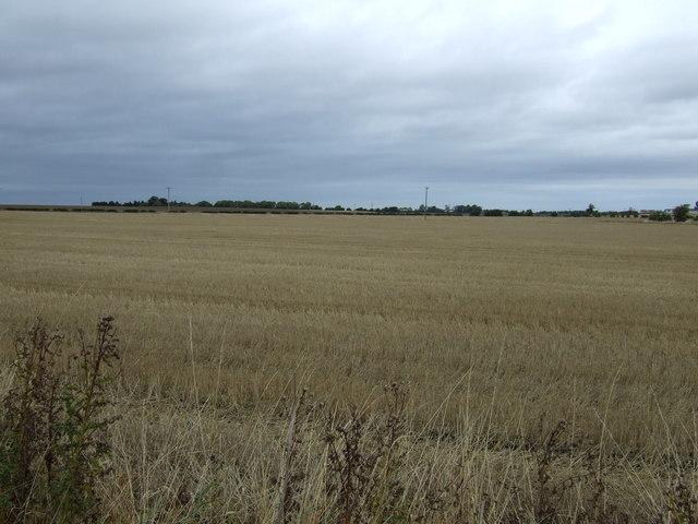 Farmland near New Winton