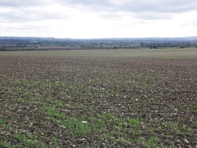 Arable land, Higher Swell