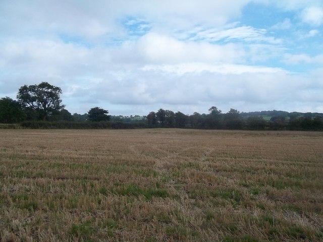 Field of Stubble near Rocester