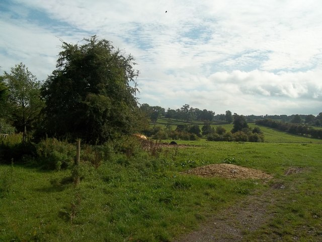 Countryside Scene near Roston