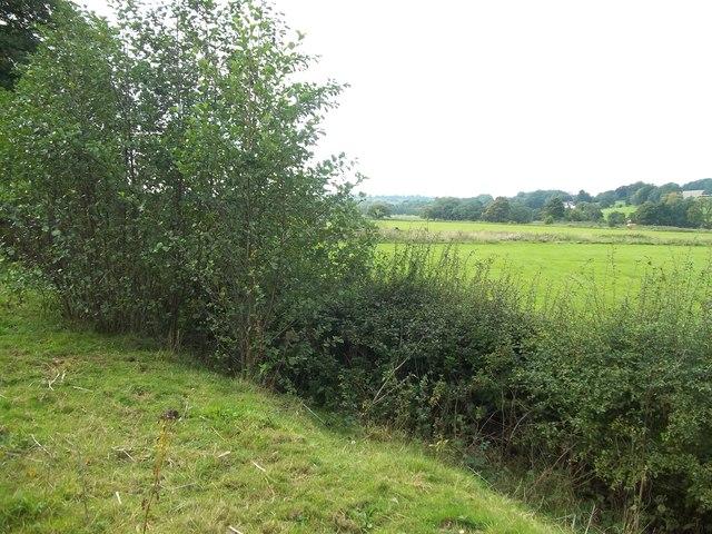 The Dove Flood Plain and Former Railway Line