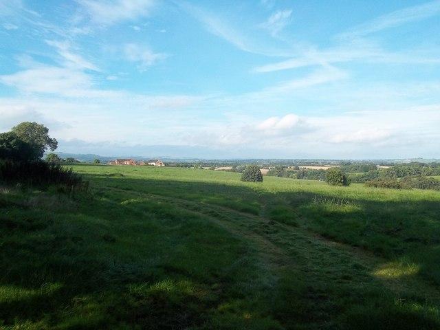Grassland seen from Edlaston Lane