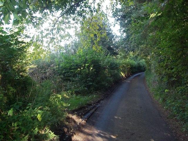 Dobbinhorse Lane