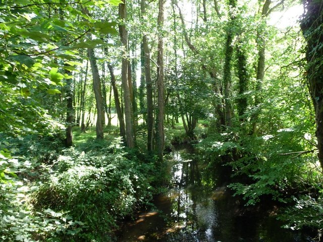 Berthin Brook