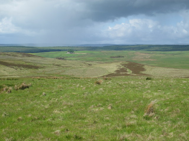 Moorland around Limey Sike north of Clemy's Cairn