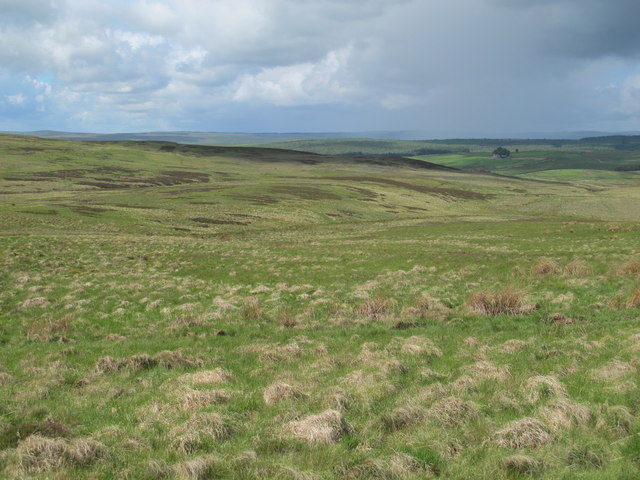 Moorland northeast of Clemy's Cairn