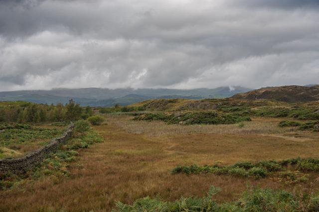 Burney Tarn