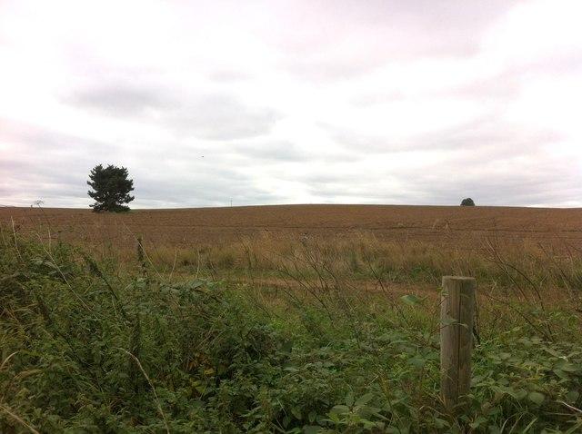 Farmland near Northampton