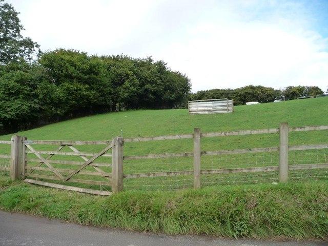 Roadside field at Pentre-waun