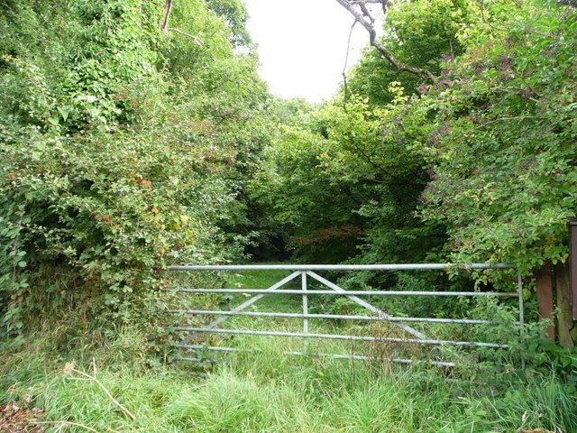 Gated track into Pentre-waun Wood