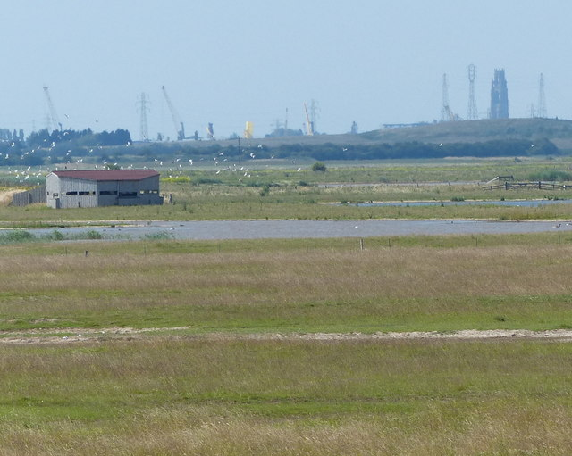 View inland across RSPB Frampton Marsh nature reserve