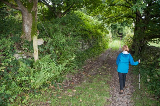 Footpath to High Rosthwaite