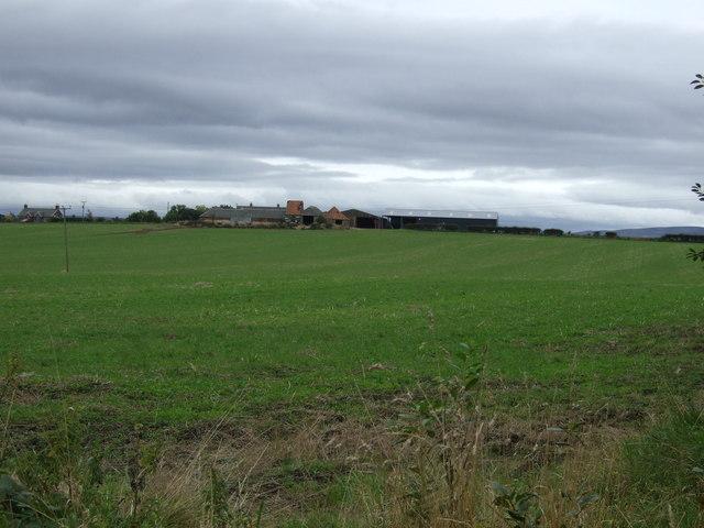 Farmland towards Wheatrig
