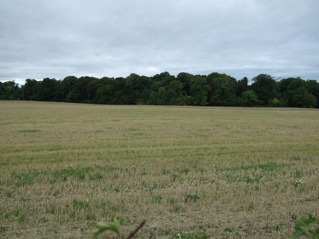 Farmland towards Redhouse Dean