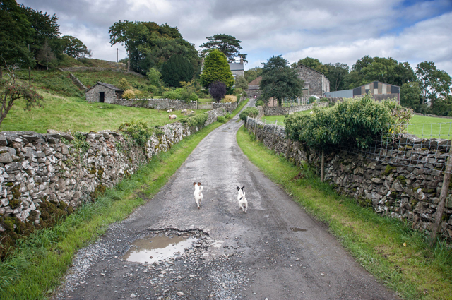 Lane to High Rosthwaite