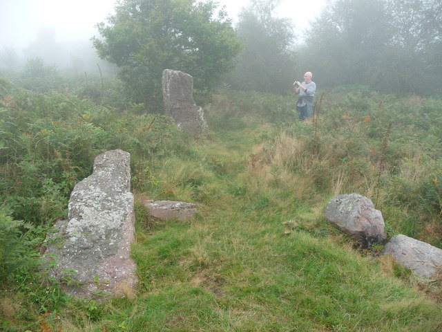 Prehistoric stones on Gray Hill, Wentwood