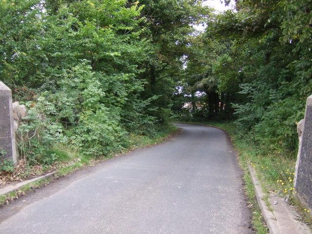 Minor road near Spittal