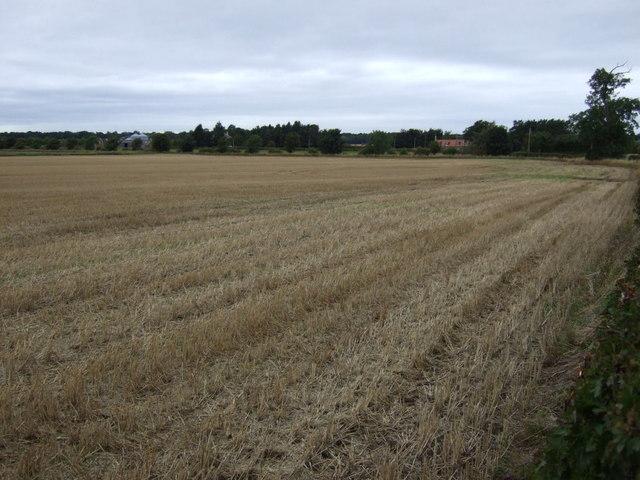 Farmland, Ballencrieff Mains