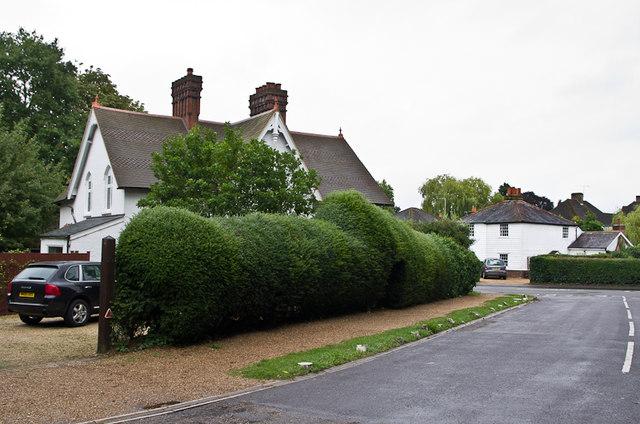 Littleworth Avenue