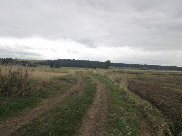 Bridleway east of Kennels Farm