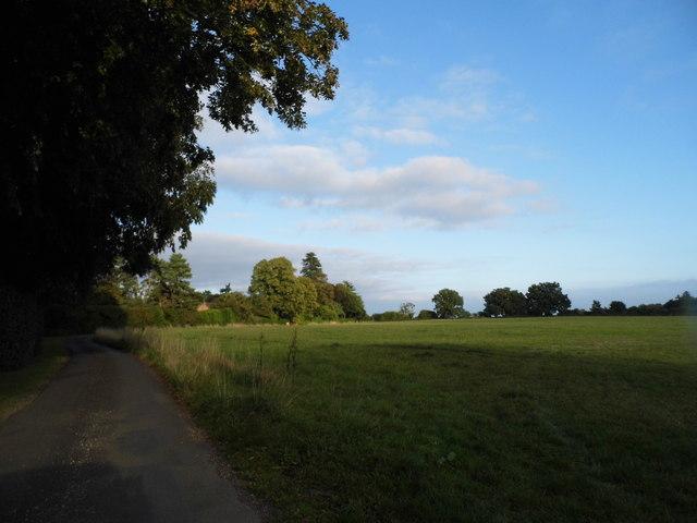 Bix Common by Green Lane