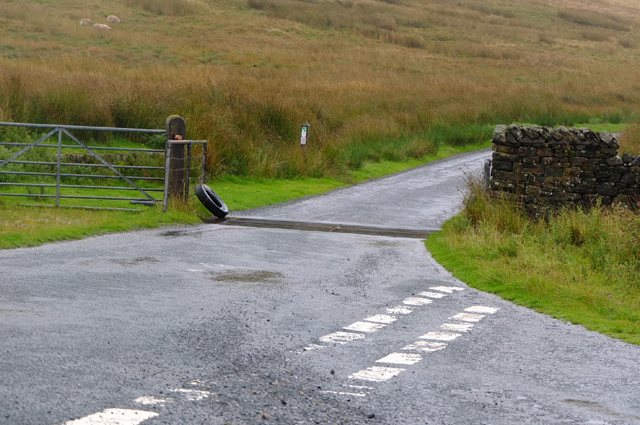 Cattle grid at Bank End