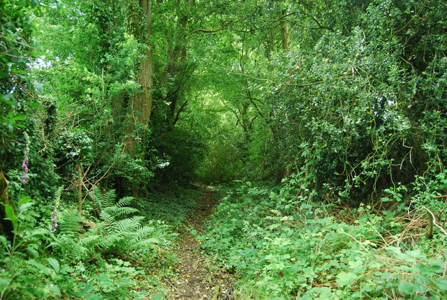 Footpath near Riverdell Farm