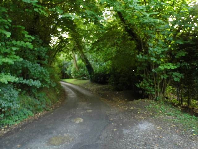 White Lane, Bix Common