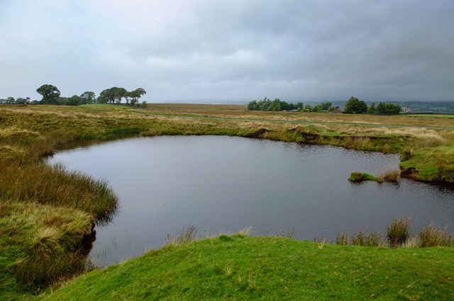 Small tarn at Green Nook Area