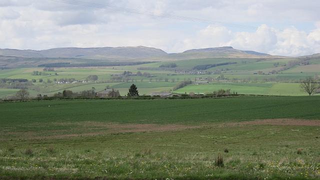 Field, St Davids