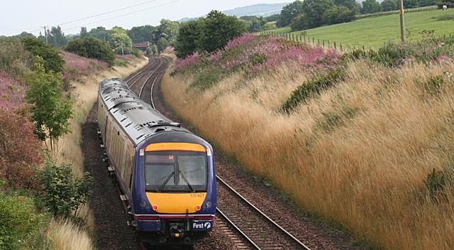Train near Battock