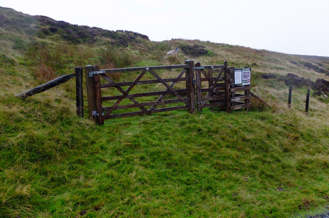 Access gate and footpath
