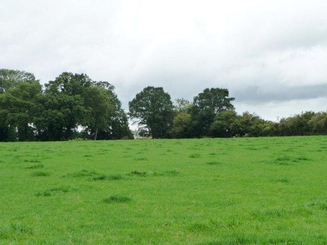 Farmland south of Cilwerg