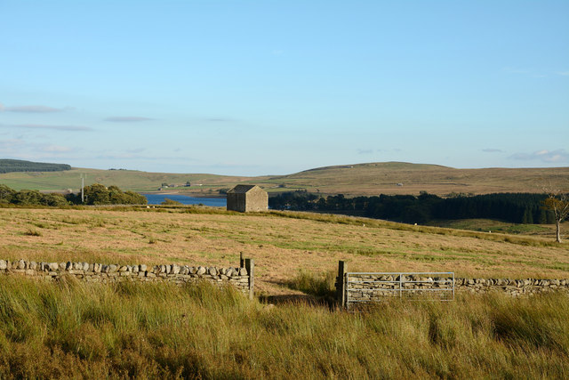 Barn, wall and rough grazing north of Selset Reservoir
