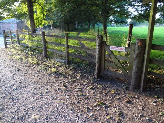 Footpath from Hagley Hall