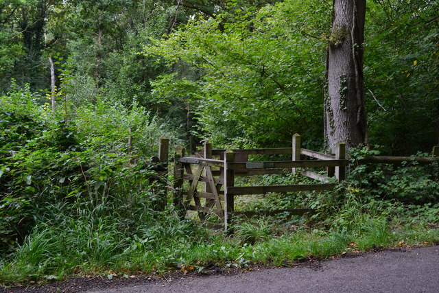 Kissing gate entrance to woodland path