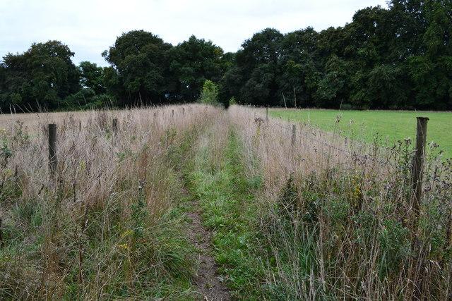 Footpath between fields near Home Farm