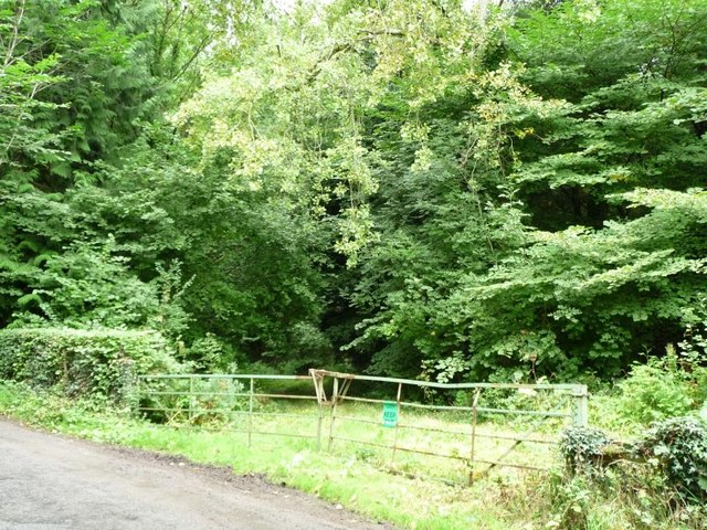 Keep out of this government-owned woodland