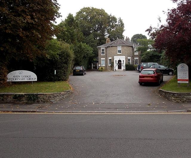 Avon Lodge Veterinary Group, Salisbury