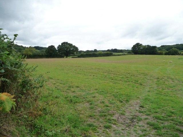 Farmland near Lower Prescoed