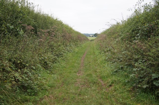 Byway towards Overton Mill