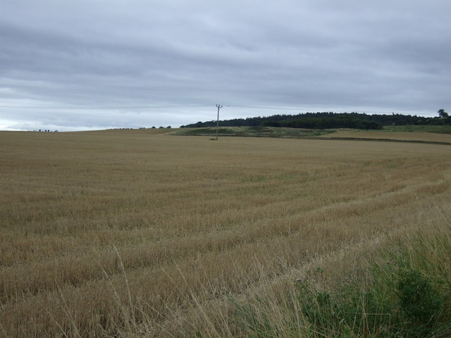 Farmland near Drem