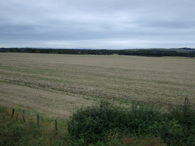 Farmland near Drem