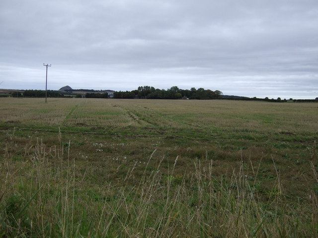 Farmland towards Muirton