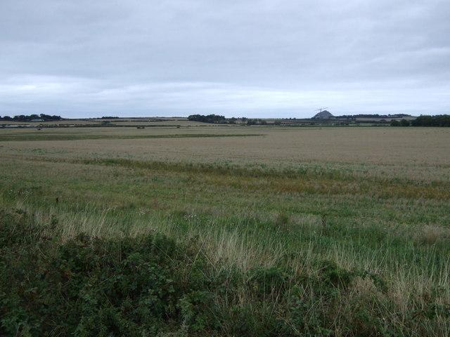 Farmland, Muirton