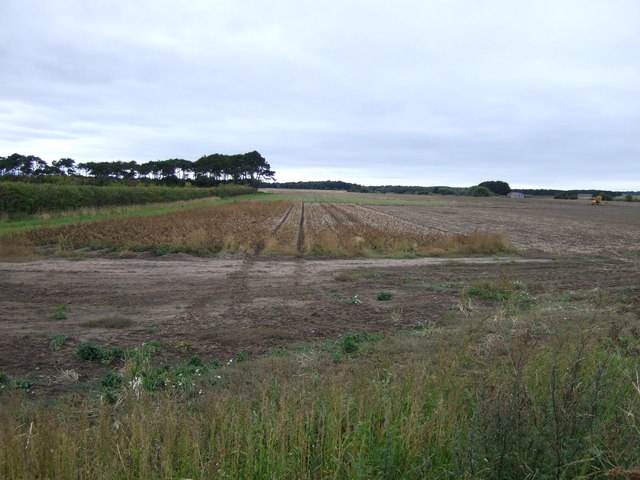 Farmland west of the B1345