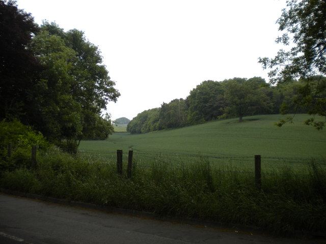 Undulating field near Bestwood Country Park