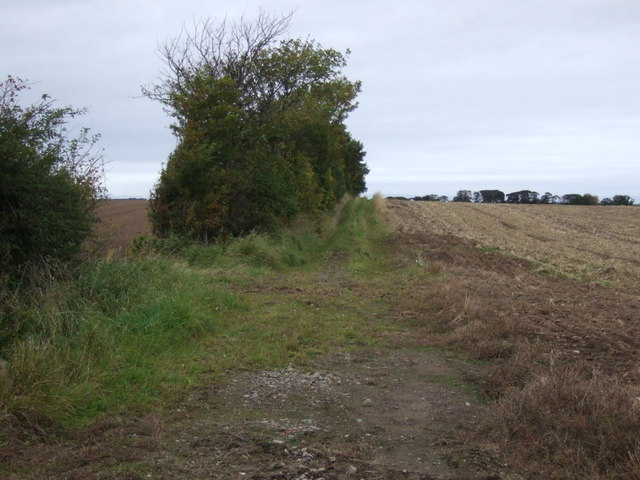 Track towards West Fortune